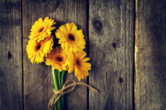 Beautiful Fresh Spring Yellow Bunch of Gerbers on Old Vintage Wooden Table. Top view with Copy Space. Spring Concept. Flower Background Stock Photos