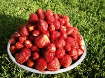 Beautiful fresh strawberries with a brilliant taste on the grass stock photos