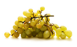 Beautiful fresh and tasty green grapes on white Stock Photos