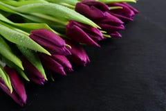 Beautiful fresh tulips on slate Stock Photography