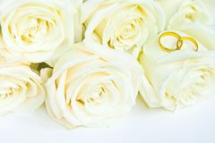 Beautiful fresh white roses with gold rings, wedding concept stock images