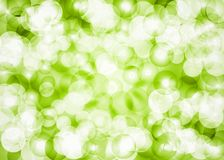 Beautiful green glittering lens festive background. Beautiful freshness green glittering lens festive background Stock Image