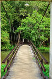 A beautiful front view of a peaceful little rock bridge Royalty Free Stock Images