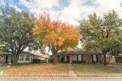 Free Beautiful Front Yard Of Typical Single Family Houses Near Dallas In Fall Season Colorful Leaves Royalty Free Stock Photography - 164551047