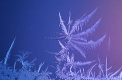 Beautiful frost pattern on window Royalty Free Stock Photography