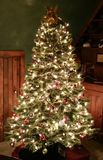 Frosted Tip Christmas Tree. A beautiful frosted Tip Christmas Tree all decorated and ready for Christmas Stock Photo