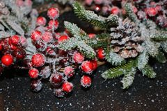 Frosty christmas wreath. A beautiful frosty Christmas wreath of spruce, red berries, green leaves and cones Stock Photos