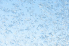 Beautiful frosty pattern on glass Stock Photos