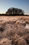 Beautiful frozen field Winter landscape Stock Photography