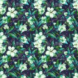 Beautiful fruit tree twigs in bloom. White and green flowers on gray background. Springtime. Seamless floral pattern. Watercolor painting. Hand drawn royalty free illustration