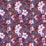 Beautiful fruit tree twigs in bloom. White and pink flowers on gray background. Springtime. Seamless floral pattern. Watercolor painting. Hand drawn Stock Image