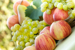 Beautiful fruits Royalty Free Stock Photos