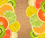 Beautiful fruits of lemon, orange, kiwi, lime and pineapple Stock Photography