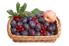 Beautiful fruits in the wooden basket. Royalty Free Stock Photos