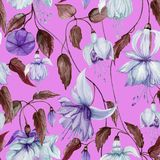 Beautiful fuchsia flowers on climbing twigs on bright pink background. Seamless floral pattern. Watercolor painting. vector illustration