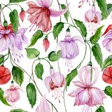 Beautiful fuchsia flowers on climbing twigs on white background. Seamless floral pattern. Watercolor painting. Hand painted illustration. Fabric, wallpaper Stock Illustration