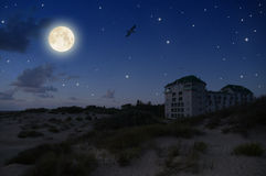 Beautiful full moon. Beautiful moonlit night in the sand dunes Stock Photo