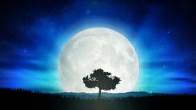 Free Beautiful Full Moon, Solitude Tree Silhouette Nature Landscape Royalty Free Stock Image - 142843886
