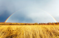 Beautiful Full Rainbow above Farm Field at Spring Royalty Free Stock Photography