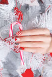 Beautiful Fun Painted Nails For Winter Royalty Free Stock Images
