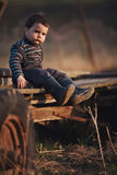 Beautiful funny boy sitting on cart Stock Photography
