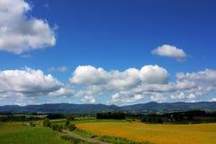 Beautiful Furano. Photo was taken in Furano of hokkaido stock image