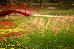 Beautiful Garden. Flowering grass in a beautiful garden. A footbridge spans the creek in the distance Royalty Free Stock Photo
