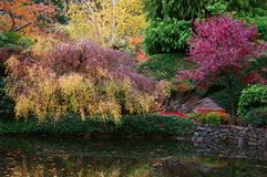 Beautiful Garden. Bright colorful Fall gardens in Canada Stock Images