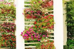 Beautiful garden Royalty Free Stock Images