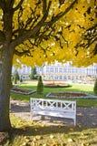 Beautiful garden Royalty Free Stock Image