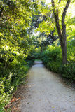 Beautiful Garden in  Athens, Greece Royalty Free Stock Images