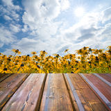 Beautiful garden background with empty wooden deck table. Royalty Free Stock Photo