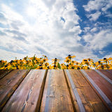Beautiful garden background with empty wooden deck table. Stock Images