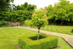 Beautiful Garden Canterbury Cathedral UK Royalty Free Stock Photos