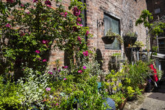 Beautiful Garden in Chester the county city of Cheshire in England. Even in the busy city of Chester there are tiny and beautiful gardens to be found in hidden stock photography
