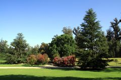 Beautiful garden, Chile. Beautiful garden in sunny day. Santiago, Chile - March of 2016 Royalty Free Stock Images