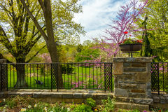 Beautiful garden with colorful flowers. A view of the garden through the fence Royalty Free Stock Photo