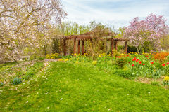 Beautiful garden with colorful flowers. Well maintained garden with yellow, red, pink flowers Royalty Free Stock Image