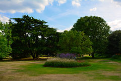 Beautiful Garden with colourful and vivid flowers, Greenwich Park, London Stock Image