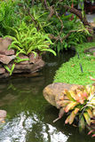 Beautiful garden decoration, pond surrounded Stock Photos