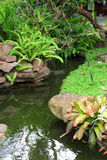 Beautiful garden decoration, pond surrounded Royalty Free Stock Image