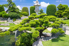 Beautiful garden in the ecotourism is designed in harmony. With many cypress, pine, stone, water and ancient trees bearing the traditional culture of Royalty Free Stock Image