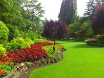 A beautiful garden. Enjoying a beautiful paradise garden Royalty Free Stock Photography