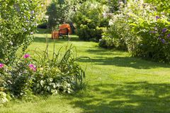 Beautiful garden, full of green plants and colorful flowers. With an armchair in the background stock image