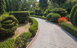 Beautiful garden with hedges Royalty Free Stock Images