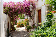 Beautiful garden and hous at Sisi, Crete. Look through a crowd beautiful flowers and cottage at Sisi,Crete Stock Image