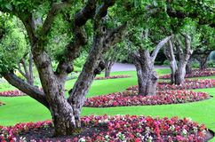 Beautiful garden landscape Stock Photo