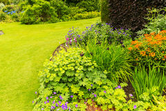 Beautiful garden landscaping in the summer. Beautiful green garden landscaping in the summer Stock Images