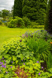 Beautiful garden landscaping in the summer royalty free stock photo