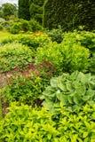 Beautiful garden landscaping in the summer stock photos